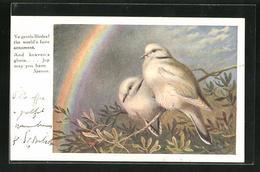 Künstler-AK Tierschutz The Royal Society For The Protection Of Birds, Zwei Weisse Vögel Und Regenbogen - Animaux & Faune