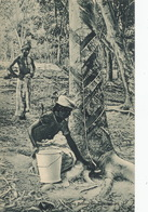 Tapping Rubber Trees  Hevea Caoutchouc The Continental Stamp Company. Hindu - Malaysia