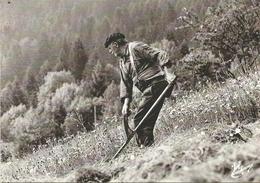 (LES VIEUX METIERS  )( LE  FAUCHEUR ) ( 88 VOSGES ) - Bauernhöfe