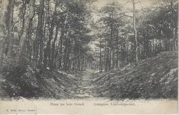 Genck.   -   Dans Les Bois Genck.  -    (campine Limbourgeoise).  1900 - Genk