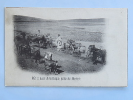 C. P. A. : ETHIOPIE : Lac Aramaya Près De HARAR, Animé - Ethiopië