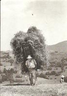 (LES VIEUX METIERS  )( AGRICULTURE )( LA HOTTE DE FOIN ) ( 88 VOSGES ) - Bauernhöfe