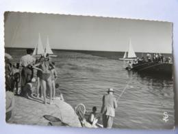 CPSM  (34) Hérault - PALAVAS Les FLOTS - Yachting Au Large De L'embouchure Du Lez - Palavas Les Flots