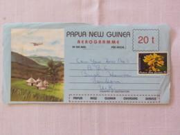 Papua New Guinea 1984 Front Of Aerogramme To England - Flowers - Plane Over Village - Papua-Neuguinea