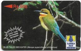Sri Lanka - Lanka Pay Phones (GPT) - Blue-Tailed Bee-Eater - 36SRLC - 600Rs, Used - Sri Lanka (Ceylon)