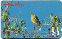 Sri Lanka - Lanka Pay Phones (GPT) - Orange Breasted Green Pigeon - 37SRLE - 100Rs, Used - Sri Lanka (Ceylon)