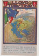 Lloyd Triestino, Linee Di Navigazione,  Pubblicitaria Illustrata - F.p. - Anni '1920 - Pubblicitari