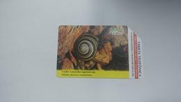 Cuba-caracolus Sagemon-urmet-(5.00pesos)-used Card+1card Prepiad Free - Kuba