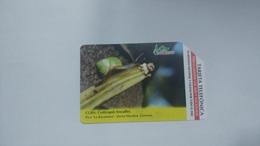 Cuba-cysticopsis Lescaillei-urmet-(5.00pesos)-used Card+1card Prepiad Free - Kuba