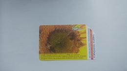 Cuba-girasol-urmet-(5.00pesos)-used Card+1card Prepiad Free - Kuba