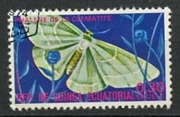 Guinée Equatoriale - Guinea 1975 Y&T N°71-0,30e - Michel N°(?) (o) - 0,30e Papillon Phalène - Guinée Equatoriale