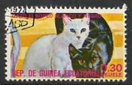 Guinée Equatoriale - Guinea 1975 Y&T N°73-0,30e - Michel N°(?) (o) - 0,30e Chats Européens - Äquatorial-Guinea