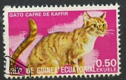 Guinée Equatoriale - Guinea 1975 Y&T N°73-0,50e - Michel N°(?) (o) - 0,50e Chat Cafre De Kaffir - Äquatorial-Guinea