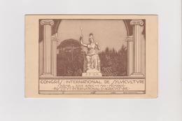 Congres Intern. De Sylviculture, Roma 1926, Illustrata Da Ortolani - Tessera Di Riconoscimento - Demonstrations