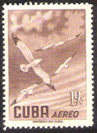 14655  Seagulls - Mouettes - Yv 138  - 1956 - Free Shipping - Cb -  2,75 - Mouettes