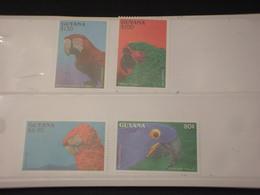 GUYANA - 1993 PAPPAGALLI  4 VALORI - NUOVI(++) - Guyana (1966-...)