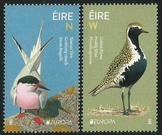 "IRLANDA /IRELAND / IRLAND / ÉIRE / EUROPA 2019 -NATIONAL BIRDS.-""AVES - BIRDS - VÖGEL -OISEAUX""- SERIE De 2 V. N - 2019"