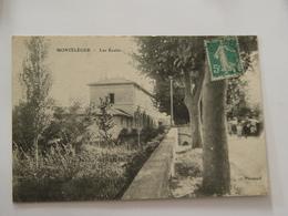 DROME-MONTELEGER-LES ECOLES - France