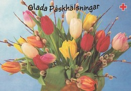 Postal Stationery - Willows And Daffodils In The Basket - Happy Easter - Red Cross - Suomi Finland - Postage Paid - Finlande