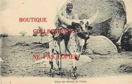 ☺♥♥ TCHAD < BOEUF Des MARAIS Du TCHAD - CARTE RARE - Tschad
