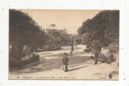 Cp, 83 , TOULON ,  Le Jardin De La Ville ,  Une Allée ,  Vierge - Toulon