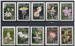 Cipro Turca/Turkish Cyprus/Chypre Turc: Fiori Diversi, Fleurs Différentes, Different Flowers - Flora