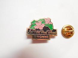 Beau Pin's , Ville De Brionne , Fleuriste , Au Petit Pont Fleuri , Eure - Villes