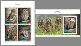 MALDIVES 2019 MNH Owls Eulen Hiboux M/S+S/S - OFFICIAL ISSUE - DH1932 - Eulenvögel