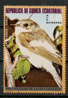Guinée équatoriale - Guinea 1976 Y&T N°92-0,45p - Michel N°992 (o) - 0,45p Oiseau D'Afrique Merle à Col Blanc - Equatorial Guinea