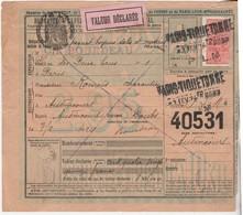 1924 / Bulletin Expédition Colis Postal N°40531 / Timbre N° 30 / Envoi Boyaux Salés BOURDEAU / Paris Tiquetonne - Colis Postaux