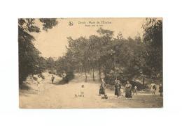 Orroir - Mont De L'Enclus.  Route Vers La Tour (1925). - Mont-de-l'Enclus