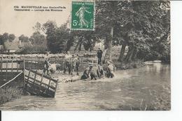 MAUDEVILLE   Lavage Des Moutons - France