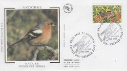 Enveloppe   FDC   1er  Jour    ANDORRE    PROTECTION  DE  LA  NATURE     Le   Pinson    1998 - Sperlingsvögel & Singvögel