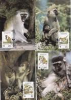 1986, St. Kitts, 184,87,  WWF. Weltweiter Naturschutz: Meerkatzen., Worldwide Nature Conservation: Monkeys. Maxi Cards - St.Kitts Und Nevis ( 1983-...)