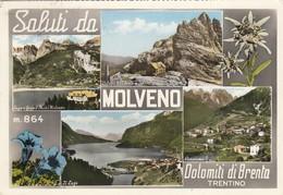 MOLVENO  / Saluti Con Vedutine _ Viaggiata - Trento