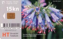 CROACIA. Flora Croata: Modro Lasinje. TK 13/04. (012). - Flores