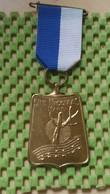 Medaille :Netherlands  -  Sint Nicolaas Mars ,W.S.V Oosterbeek - Holland. / Vintage Medal - Walking Association - Pays-Bas