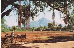 TIRUVANNAMALAI, SOUTH INDIA - India