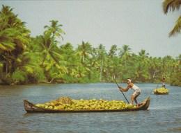 THE KERALA BACKWATERS: TRANSPORTING COCONUTS - India