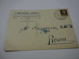 ROMA    ---   VINO  -UVA  -- ACCESSORI---   L'ENOLOGIA  LAZIALE - Weinberge