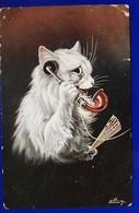 1 CPA 1907 Chat Humanisé Téléphone éventail Illustrateur Ell... - Illustrators & Photographers