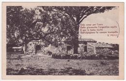 °°° 13636 - CARTOLINA CON VERSI DI B. PRINA - 1928 °°° - Filosofia & Pensatori