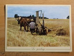 AGRICULTURE LES METIERS D'ANTAN - LE JAVELAGE - REALISE AVEC CONCOURS ASSOCIATION ANIMATION RURALE MARCHAIS BETON YONNE - Wagengespanne