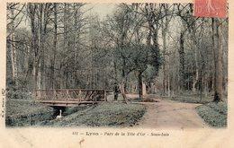 Lyon Parc De La Tete D'or Sous Bois - Lyon