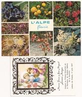 Postal Y Estampilla FLORES - Flores