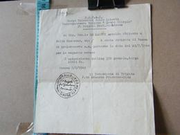 MONDOSORPRESA, C.L.N.A.I CORPO VOLONTARI DELLA LIBERTA RAGGRUPAMENTO BRIGATE DAVITO GIORGIO, BRIGATA FRAT GIANDRONE 1945 - Documenti