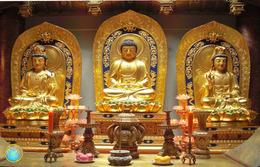 1 Magnet Neuf Theme Asie Chine - Tourism