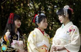 1 Magnet Neuf Theme Asie Japon - Turismo