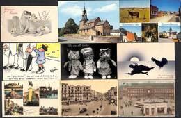Lot 42 Cartes - Un Peu De Tout Fantaisie La Panne Liège Tram Alsemberg Cats DVD Heyst Yser Blankenberge...voir Zie Scans - Cartes Postales