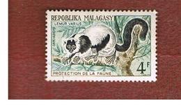 MADAGASCAR -  SG 30 -   1961 LEMURS: VARECIA  VARIEGATA   -  USED° - Madagascar (1960-...)